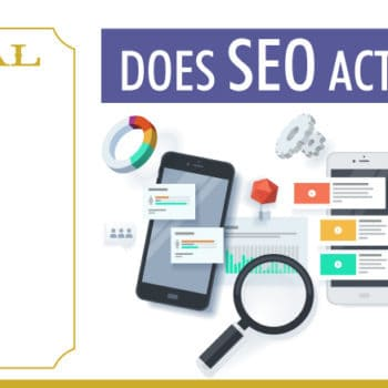 Doctor Digital The Column   Does SEO Actually Work?