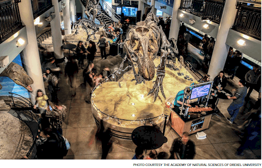 academy of natural sciences dinos after dark